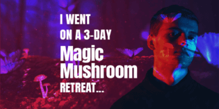 I Went on a 3-day Magic Mushroom Retreat…